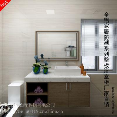 尚百年全铝家居铝制整板板式家居环保防潮防水浴室柜型材厂家直销