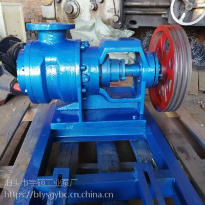 NYP高粘度转子泵 泊头宇硕生产粘度高专用子泵 果酱专用泵 糖蜜输送专用泵