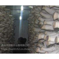 杏鲍菇冷库提高湿度专用加湿器 嘉兴鸿旭