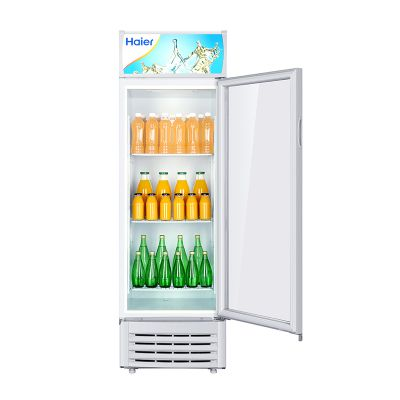 Haier/海尔商用立式展示柜 SC-242单门冷藏保鲜柜 大容量冷饮料柜