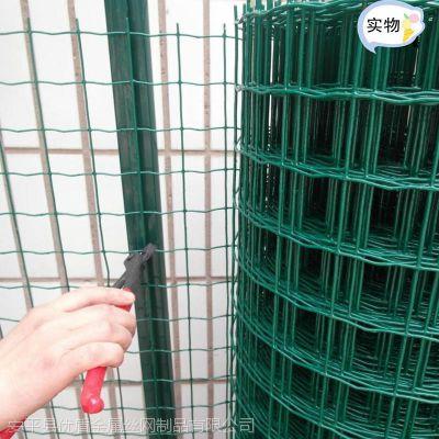 哪里有养鸡铁丝网 优盾现货养鸡围栏网批发 规格介绍荷兰网