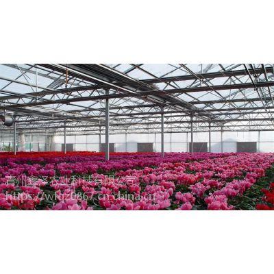安徽花卉连栋大棚/智能花卉玻璃大棚的配套设备有哪些/山东温室公司地址
