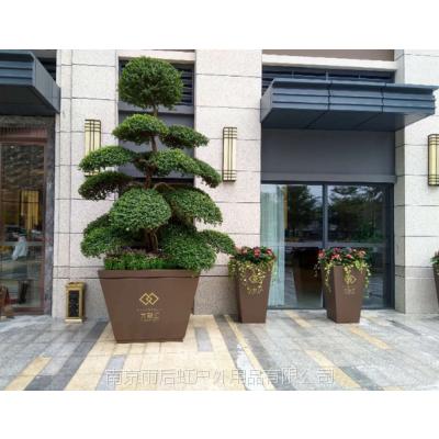 南京售楼处玻璃钢美陈落地花盆户外景观花钵树脂组合花箱
