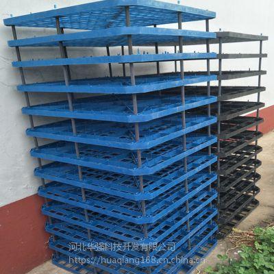 网格方孔填料 水泥网格填料替代品 聚丙烯网格板 河北华强