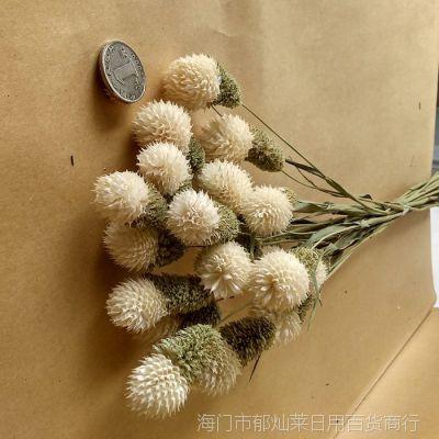 云南组合干花草莓花 家居装饰花束手工插花饰品餐桌客厅小华店