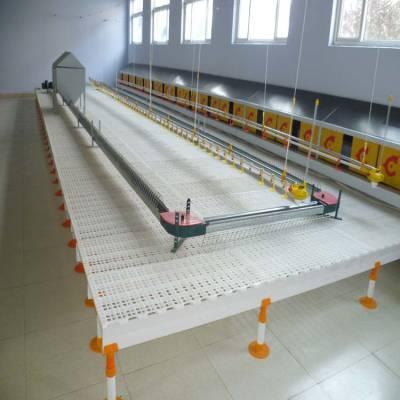厂家生产大鹅漏粪板小鸭小鹅育雏漏粪板鸭子漏缝地板