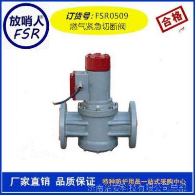 电磁式燃气紧急切断阀燃气报警器
