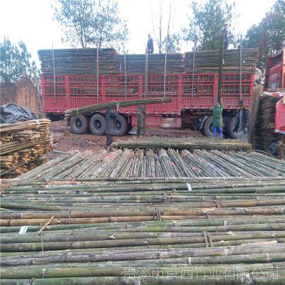 苹果园枸杞园编蒜箔防寒工程用的4米竹杆 江西京西竹业发货 货真价实