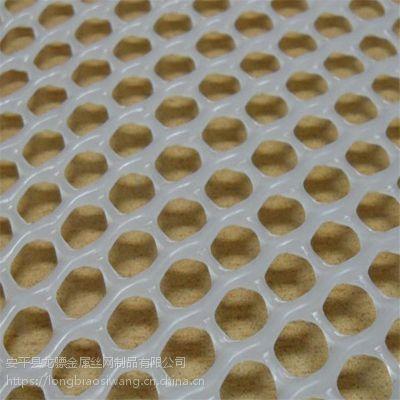 圆孔养鸡网 养殖塑料脚垫网 育雏网厂家