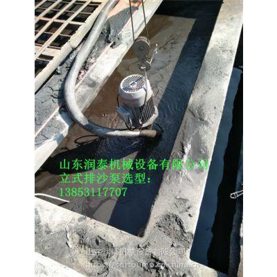 CNL型液下立式泥砂泵、液下渣浆泵厂家直销
