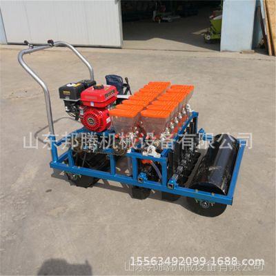 拖拉机带蔬菜谷子精播机 汽油电动手推油菜播种机厂家直销