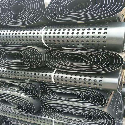 蓄排水板性能 种植蓄排水板 土工布全称