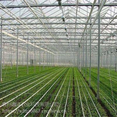 育苗温室用玻璃好还是薄膜好 玻璃育苗温室大棚