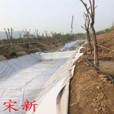 700g非织造复合土工膜天津报价