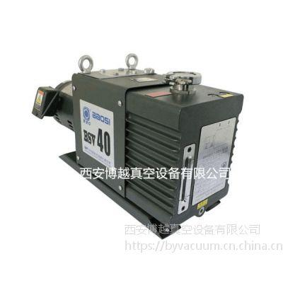 BSV40旋片真空泵 照明 制冷 真空干燥