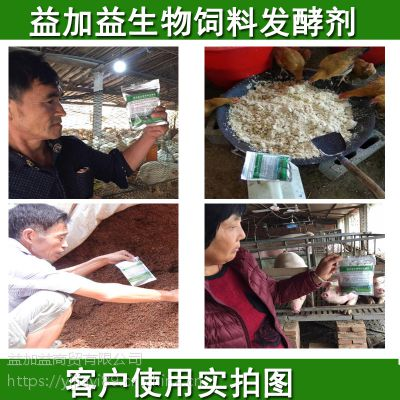 豆饼发酵做猪饲料的方法怎样发酵豆饼有营养