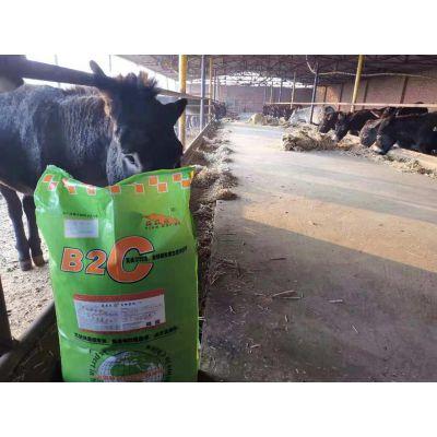 英美尔驴饲料您用过吗?英美尔驴饲料深受养殖户欢迎