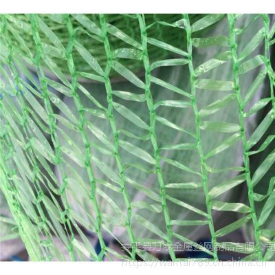成捆盖土网 现货施工盖土网 冬日大棚保温网