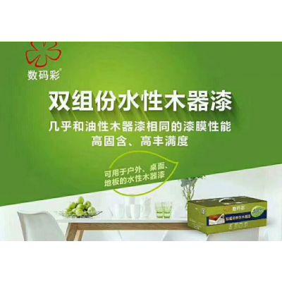 数码彩漆厂家(在线咨询) 贵州木器涂料 水性木器漆厂家