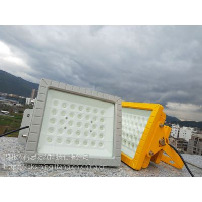 SW8131-工业专用LED防爆泛光灯,70w防爆灯