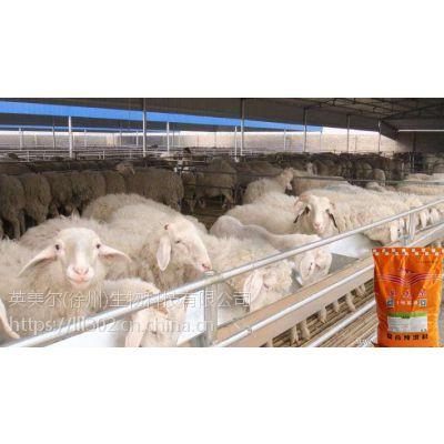 羊如何快速催肥,有什么诀窍吗
