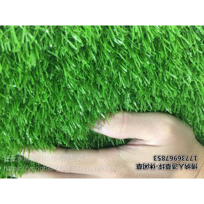 滨州博纳体育丨足球场草坪厂家免费拿样全国发货