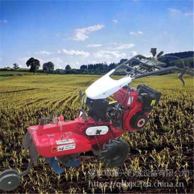 果农专用多功能田园管理机型号富兴- 葡萄旋耕起垄专用开沟培土机