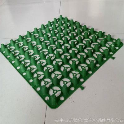 塑料排水板 广场绿化用排水板 土工布胶带