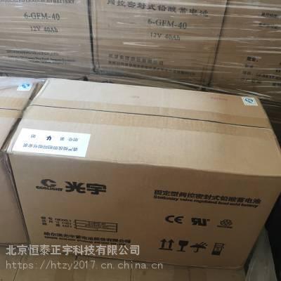 光宇铅酸蓄电池6-GFM-65固定型阀控密封式12V65AH/20HR