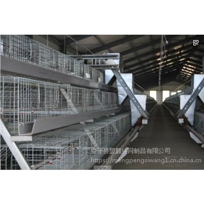 供应外贸出口三层镀锌鸡笼 4层蛋鸡笼 肉鸡笼现货销售