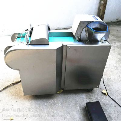 输送带切菜机视频 海带豆腐皮切丝机 土豆切块机