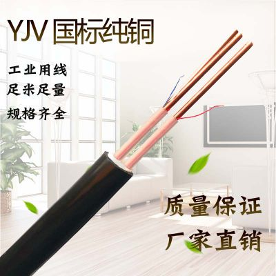厂家金环宇电线电缆 YJV系列电缆 YJV2*6平方2芯 国标室外工程电缆线