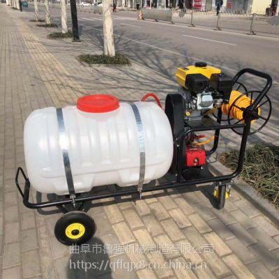 通化菜园果园灭虫打药机 汽油动力消毒机价格 400L杀虫喷雾器