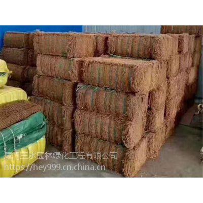边坡复绿植草护坡工程专用绿化材料昭通批发厂