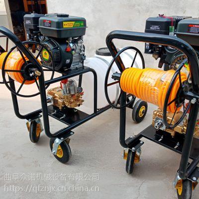 园林绿化喷药机 农用高压手推式汽油打药机 花圃苗木喷雾器