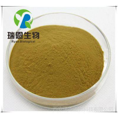 桑叶提取物 20:1 纯天然桑叶植物浓缩粉 桑叶粉 厂家直销品质保证