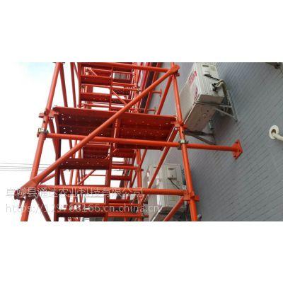 A50型安全爬梯A通达生产厂家A香蕉式安全爬梯