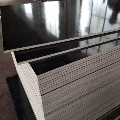 建筑模板山东建筑模板不开胶不变形 德州星冠木业