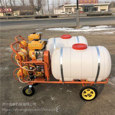 喷雾器大批量现货直销/庞泰打药机消灭害虫有保障