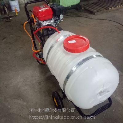 菜地喷雾打药机 科博果园专用打药机价格 7.5汽油喷雾器