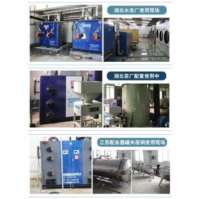 安徽50kg生物质蒸汽发生器报价-诸城博通热能(优质商家)