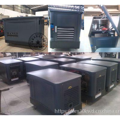 30个千瓦汽油/燃气发电机价格