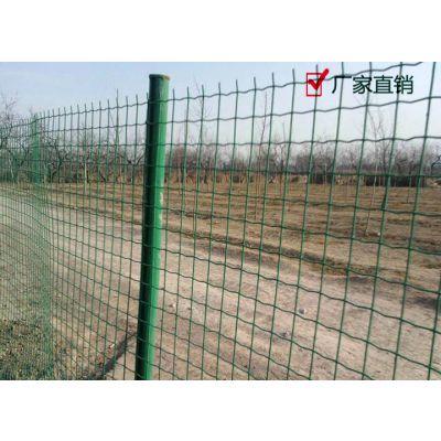 绿色荷兰网,养殖网厂家,圈山防护网,荷兰网价格