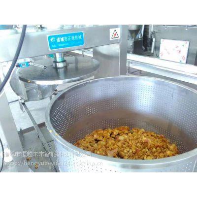 恒越未来HYWL-400L双桶油麦菜压榨脱水机,果蔬压榨脱水机