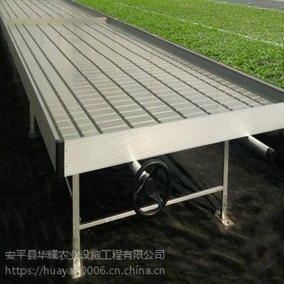 温室自动化灌溉潮汐式移动苗床信赖实力厂家/华耀农业