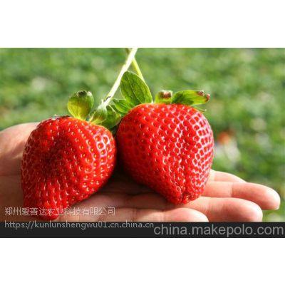 草莓膨果增甜专用二氧化碳吸附剂 不含激素