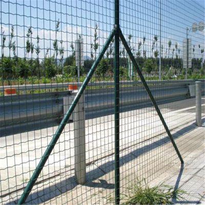 果园防护网 包塑铁丝网 荷兰网厂家