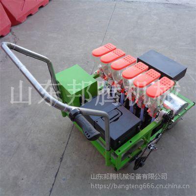 直销单粒手推式电动蔬菜播种机 拖拉机带动青菜播种机