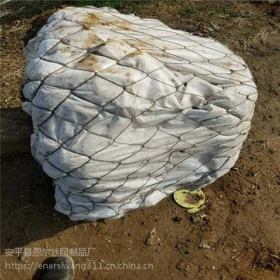 浙江杭州新型材质制作树根网,包土球网,苗木铁丝网