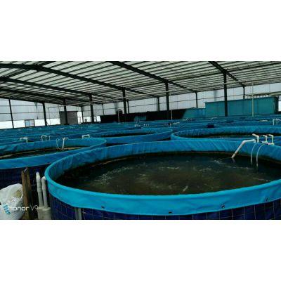 定做养殖帆布鱼池 活动折叠水池 户外养殖鱼池